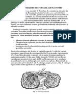 Anomalii de Dezvoltare Ale Placentei