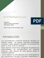 Act i No Bacillus 2016