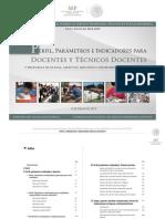1 Perfil. Parámetro e Indicador.pdf