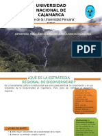 Estrategias Para La Diversidad en Cajamarca (2)