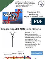 9.5 Revision y Reparasion Del ADN