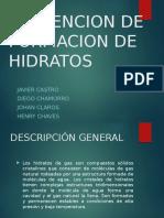 Exposición Final de Hidratos de Gas.