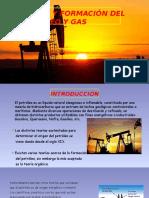 Origen y Formación Del Petroleo y Gas