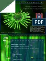 equisetumarvensel-140722194258-phpapp02