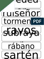 palabras con r y rr.pptx