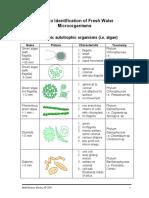 plankton.pdf