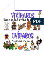 Animales Oviviviparos