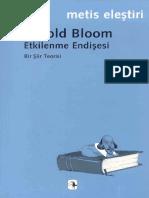 Harold Bloom-Etkilenme Endişesi