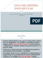Clase 3 Examensistemacardiovascular