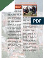 Prevencion y Mitigacion Del Riesgo en La Comunidad