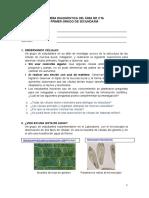 Evaluación diagnóstica CTA - 1°.doc