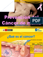 Rotafolio3 - Prevencion Cancer de Mama