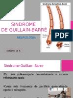 Sd Guillain-Barre Exposicion Completa