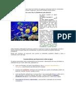 Sobre Os Peixes