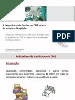 6-Gestão CME_ Indicadores de Qualidade Em CME_Ligia Garrido