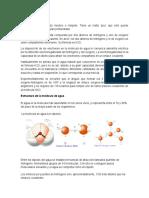 Composición y Características de La Molécula de Agua