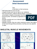 Muscles Ppt 224