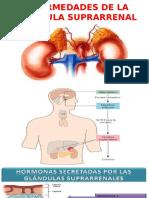 enfermedades de glandula suprarenal
