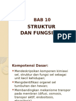 Bab 10 Struktur & Fungsi Sel