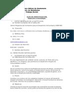 Guia de Investigación Ppi