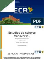 Presentacion epidemiologia