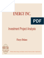 Investment Project Analysis
