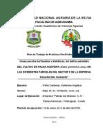 Plan de trabajo PPP Angélica.docx