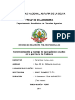 Informe Final Ppp Juan