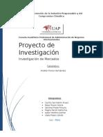 Proyecto de Investigacion de Mercado