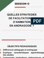 Strategies Facilitation Et Animation