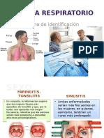 Sistema-Respiratorio-Expo-PC-III.pptx