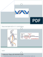 TRANSCRIPCIOn-1.pptx