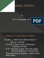 CRANIAL NERVES.pptx