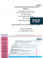 DENGUE Historia Natural de la Enfermedad
