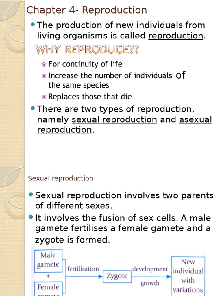 Science form 3 chapter 4 asexual reproduction in bacteria