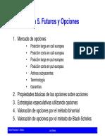Teoria Financiera. Futuros y Opciones