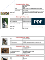 dog information 2016
