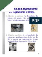 Aula_1_-_Glicolise (1)