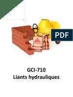 GCI710 - Receuil de Notes
