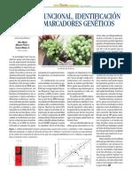 Genomica Funcional