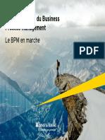 EY-Panorama-2013-Business-Process-Management.pdf