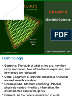 Chapter 8 Genetics