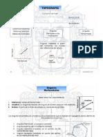 CONSULTA TOPOGRAFIA.pdf