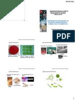 Contaminação Microbiana Em Produtos Farmacêuticos