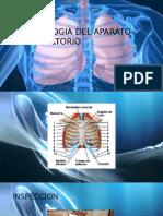 semiologia aparato respiratorio