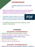 Kidney, Ureter, Bladder