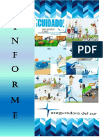 INFORME ASEGURADORA DEL SUR.pdf