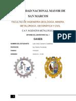 Informe de Gases- Primera Presentacion-fisicoquimica I