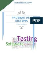 PRUEBAS-DEL-SISTEMA-FIS (1).docx