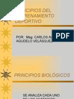 principiosdelentrenamiento-121128105607-phpapp02